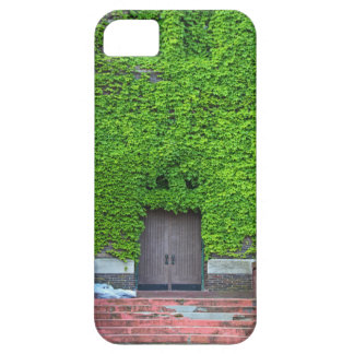 Mary Manse Doors- vertical iPhone 5 Covers