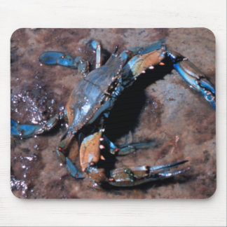 Maryland Blue Crab Mouse Pad
