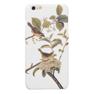 Maryland Yellowthroat Audubon Birds with Flowers