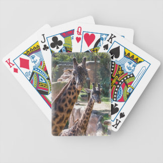 Masai Giraffe Bicycle playing cards