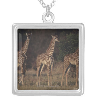Masai Mara National Reserve 3 Silver Plated Necklace
