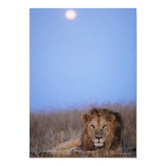 Masai Mara National Reserve Card