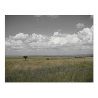 Masai Sky Postcard