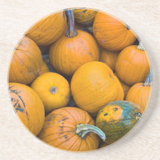 Massachusetts, Salisbury, pumpkins, autumn Beverage Coasters