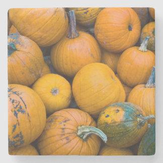 Massachusetts, Salisbury, pumpkins, autumn Stone Beverage Coaster