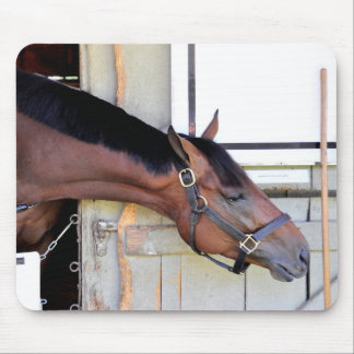 Master Plan - Todd Pletcher Mouse Pad