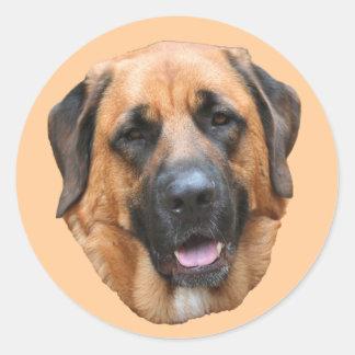 Mastiff Mix Dog Face Sticker