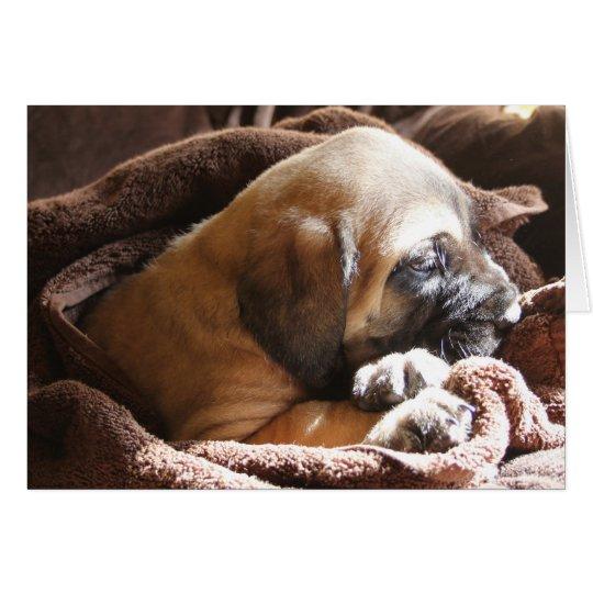 """Mastiff Puppy """"Miss You"""" card"""