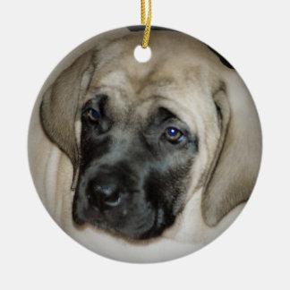 Mastiff Puppy Ornament