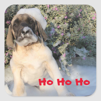 Mastiff Puppy with santa beard bubbles Square Sticker