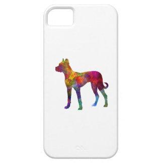 Mastiff Spanish 01 in watercolor 2 iPhone 5 Covers