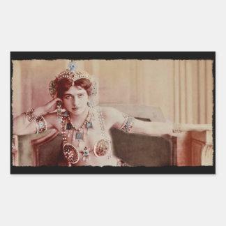 Mata Hari Harem Costume