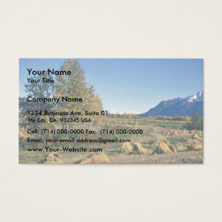 Matanuska Valley Hay Field Business Card