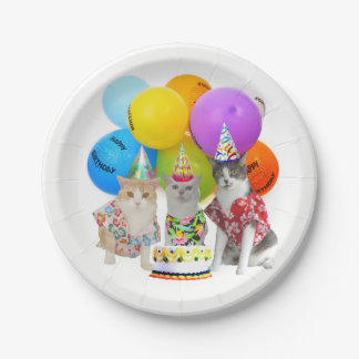 Matching Plates for Funny Cat Invitations