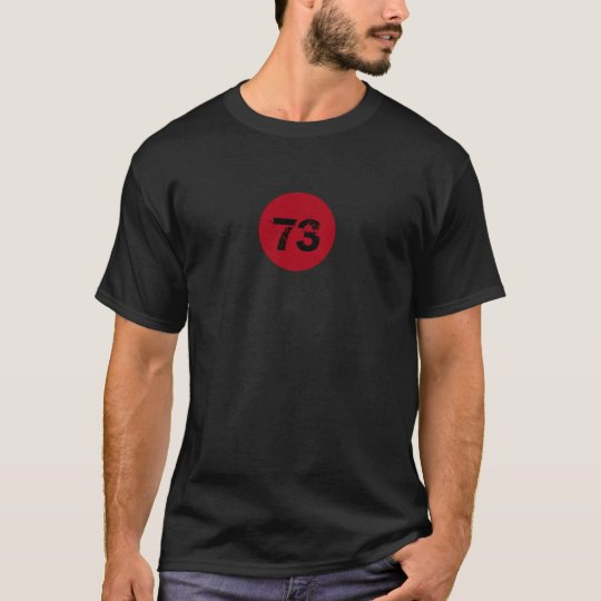 Math Prime Number 73 on Red Circle T-Shirt