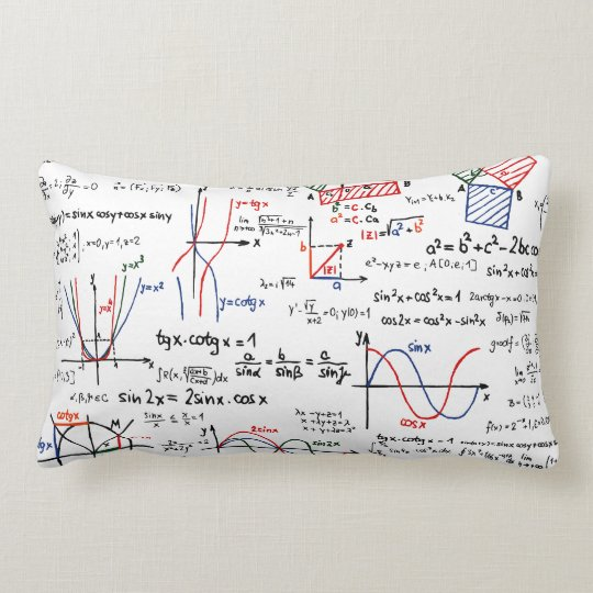 Mathematics Cheat Sheet Pillow