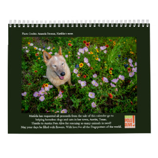 Matilda and the Flowers Calendars