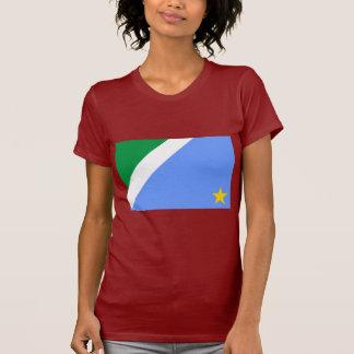 Mato Grosso do Sul, Brazil Flag Tshirts