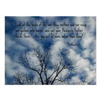 Matthew 6:26 Look at the birds of the air... Poster