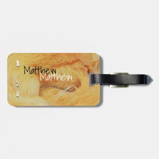 Matthieu 8 20 luggage tag