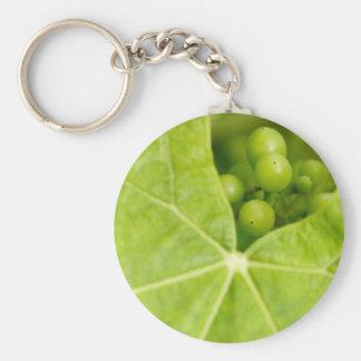 Maturing grapes basic round button keychain