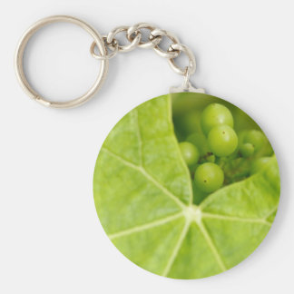 Maturing grapes keychain