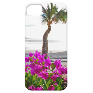 Maui Beach iPhone 5 iPhone 5 Cases