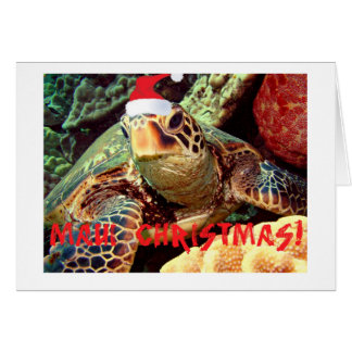 """MAUI CHRISTMAS""  SEA TURTLE WITH CHRISTMAS HAT CARD"