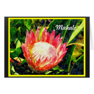 Maui Hawaii Tropical King Protea Flower, Mahalo Card