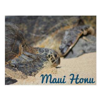 Maui Honu (Sea Turtle) Postcard