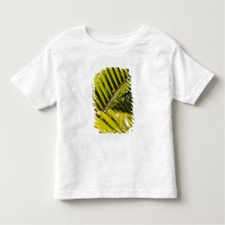 Mauritius, Central Mauritius, Moka, palm Toddler T-shirt