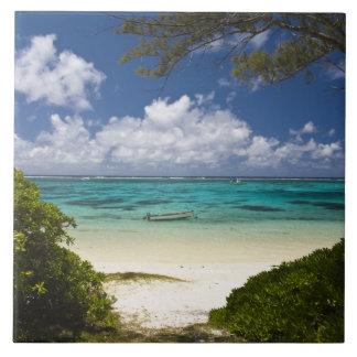 Mauritius, Eastern Mauritius, Belle Mare, East Tile