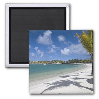 Mauritius, Eastern Mauritius, Trou d' Eau Douce, Magnet