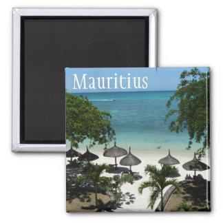 Mauritus Magnet