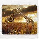 Mauspad Giraffen Sonnenuntergang Mouse Pad
