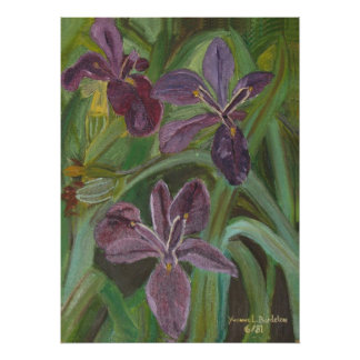 Mauve LA  Iris Poster