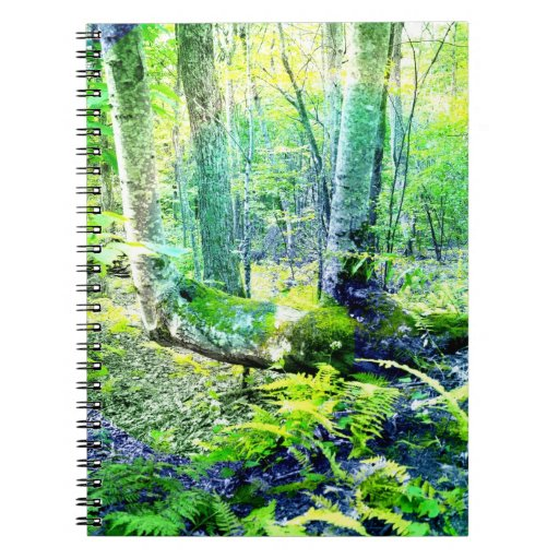 Max Patch Tree Notebook