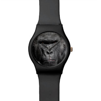 MAY 28 TH GORILLA WATCH