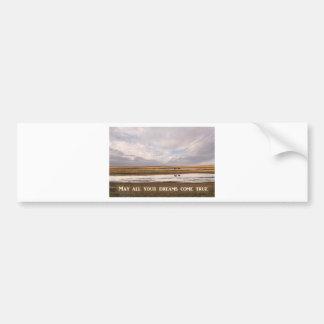 May all your dreams come true bumper sticker