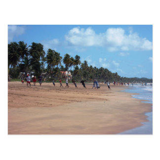 Mayaro Beach Early Morning Fishing Postcard