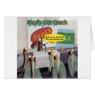Mayfly Life Coach Funny Card