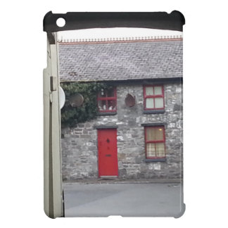 Mayo City iPad Mini Covers