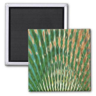 Mayur Pankh - Peacock Feather Refrigerator Magnets