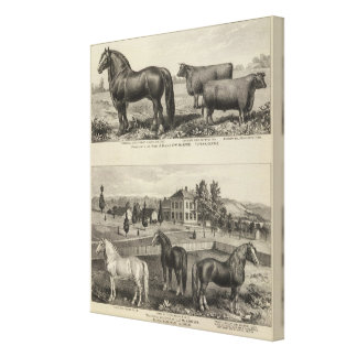 McAfee property, Topeka McCrumb, Kansas Gallery Wrapped Canvas