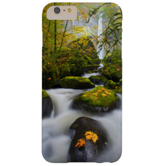 McCord Creek Bigleaf Maple | Columbia Gorge, OR Barely There iPhone 6 Plus Case