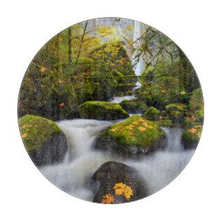 McCord Creek Bigleaf Maple | Columbia Gorge, OR Boards