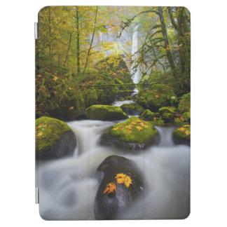 McCord Creek Bigleaf Maple   Columbia Gorge, OR iPad Air Cover