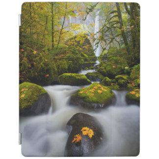 McCord Creek Bigleaf Maple | Columbia Gorge, OR iPad Cover