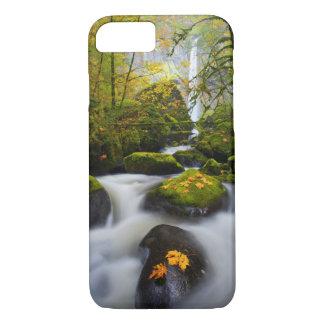 McCord Creek Bigleaf Maple | Columbia Gorge, OR iPhone 8/7 Case