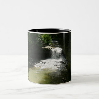 McCormick's Creek Waterfall Mug